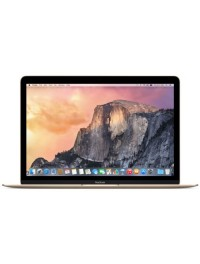 "MacBook Retina 12"" (17)"